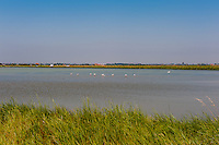 Salt pans and countryside around Ravenna