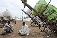INDIA Maharashtra, cotton farming in Vidarbha region , farmer supply cotton yield after auction at cotton market to ginning factory in Pandharkawada, Vidarbha has a high rate of farmer suicide due to debt crop failure of BT cotton and drought / INDIEN Maharashtra, Baumwollanbau in der Region Vidarbha , Farmer liefern Baumwolle nach Auktion auf dem Baumwollmarkt zur Entkernungsfabrik in Pandharkawada , Region Vidarbha hat eine enorm hohe Rate von Bauernselbstmorde durch hohe Verschuldung fuer Saatgut Pestizide und Duenger , Ernteausfaelle von gentechnisch veraenderter Bt - Baumwolle durch Duerre und Wassermangel