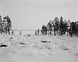 FINLAND, Arctic, Inarijarvi lake covered with snow