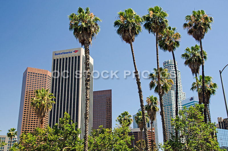 US Bank Tower Downtown Los Angeles