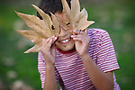 Young boy playing with leaves in the Fall - EXCLUSIVELY AVAILABLE HERE
