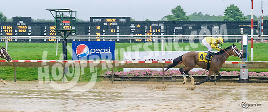 Cowboy Hero winning at Delaware Park on 7/6/17