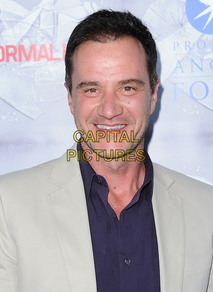 Tim DeKay attends The HBO L.A. Premiere of The Normal Heart held at The WGA in Beverly Hills, California on May 19,2014                                                                               <br /> CAP/DVS<br /> &copy;DVS/Capital Pictures