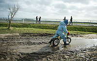 belgians breed them young <br /> #cxracers<br /> <br /> 2014 Noordzeecross
