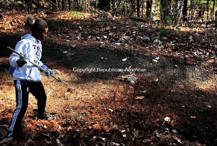 TORRINGTON, CT, 03 DEC 11-120311AJ01- Toni Wilson of Torrington rakes leaves on the Buttrick Road Trail in Torrington during a cleanup on Saturday.  Alec Johnson / Republican-American