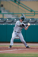 Dartmouth Big Green third baseman Steffen Torgersen (29) at bat during a game against the USF Bulls on March 17, 2019 at USF Baseball Stadium in Tampa, Florida.  USF defeated Dartmouth 4-1.  (Mike Janes/Four Seam Images)
