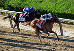 June 8, 2019 : #7, Sir Winston, ridden by jockey Joel Rosario, wins the 151st Belmont Stakes on Belmont Stakes Festival Saturday at Belmont Park in Elmont, New York. John Voorhees/Eclipse Sportswire/CSM