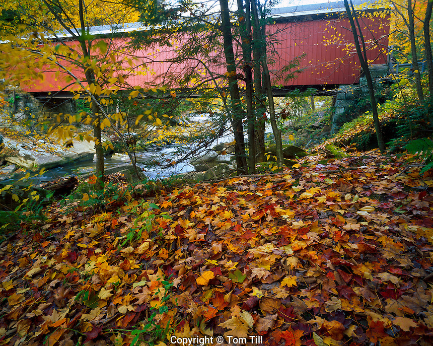 Covered bridge McConnell's Mill State Park, Pennsylvania Appalachian Mountains Morning 4x5 H IC OCTOBER