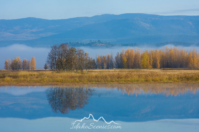 Idaho, Bonners Ferry. A Perfect reflection of mountains, fog and autumn trees on the Kootenai Wildlife Refuge, preserved wetlands and waterfowl habitat. KWR NWR