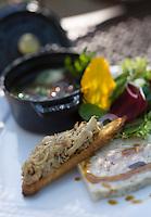 Europe/France/Provence-Alpes-Cote d'Azur/04/ Alpes de Haute-Provence/Moustiers-Ste-Marie: variation autour du lapin :terrine de lapin, croûton de rillettes ,fine gelée et quelques herbes du jardin