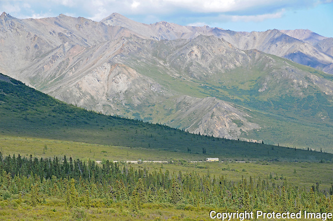 a park bus on the road in Denali National Park is dwarfed by the mountains behind it
