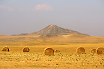 Straw bales and Castle Rock Butte off highway 168.