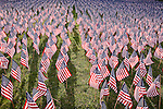 American flags on Boston Common commemorate Massachuestts military heroes, Boston, MA, USA