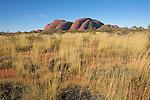 Les Monts Olgas ou Kata Tjuta, célèbre site à 20 km d'Uluru