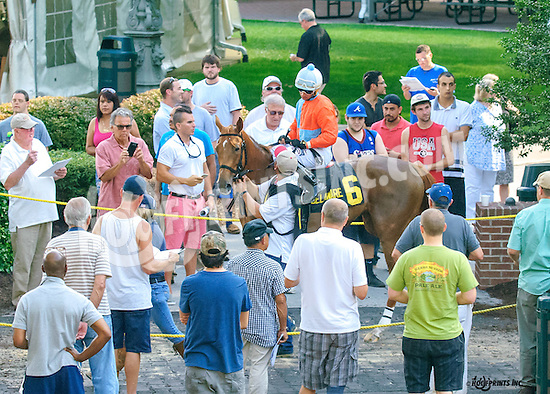 Channel Regatta before The Christiana Stakes at Delaware Park on 7/6/16