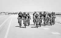 when exposed to the heavy sea winds, Team LottoNL-Jumbo forces the peloton to break into echelons.  Marcel Kittel (DEU/QuickStep Floors) made the first break.<br /> <br /> Ster ZLM Tour (2.1)<br /> Stage 2: Tholen &gt; Hoogerheide (186.8km)