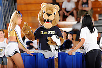 14 November 2008:  FIU's mascot, Roary, helps entertain the crowd during a time out in the first half of the Wisconsin-Green Bay 68-45 victory over FIU at FIU Arena in Miami, Florida.