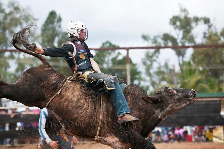 Bull rider in action at Mt Garnet Rodeo.  Mt Garnet, Queensland, Australia