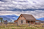 An old cabin sits in the field on Mormon Row near Jackson Hole, Wyoming.