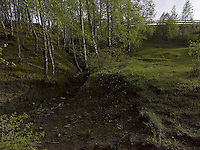 FOREST_LOCATION_90067