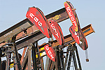 Petroleum pump jacks by the road in the southern San Joaquin Valley, California.
