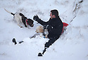 13/01/17<br />  <br /> Leum Shoebridge sledges in deep snow with his dogs Ted &amp; Fred near the Cat and Fiddle between Macclesfield and Buxton in the Peak District.<br /> <br /> All Rights Reserved F Stop Press Ltd. (0)1773 550665   www.fstoppress.com