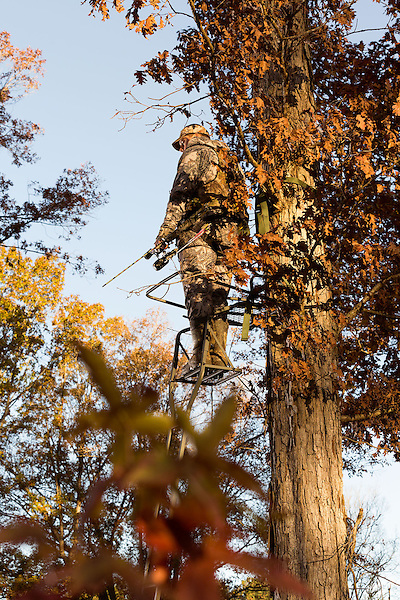 November 10, 2013. Durham, North Carolina.<br /> A local hunting advocate led the movement to allow the bow hunting of deer within the city limits of Durham, NC. The law, which is effective immediately, gives licensed hunters free range within city limits as long as they're in a ten foot tall deer stand, hunting on at least five acres, and are at least 250 ft away from homes and businesses. The aim of the law, as with many similar ones around the country, is to cut down on deer related car accidents that have spiked in recent years as homes are built in areas that in the past had been home to the animals.