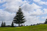 General View during the Charles Tour, Muriwai Open at Akarana Golf Course, Auckland, New Zealand, Friday 7 April 2017.  Photo: Simon Watts/www.bwmedia.co.nz