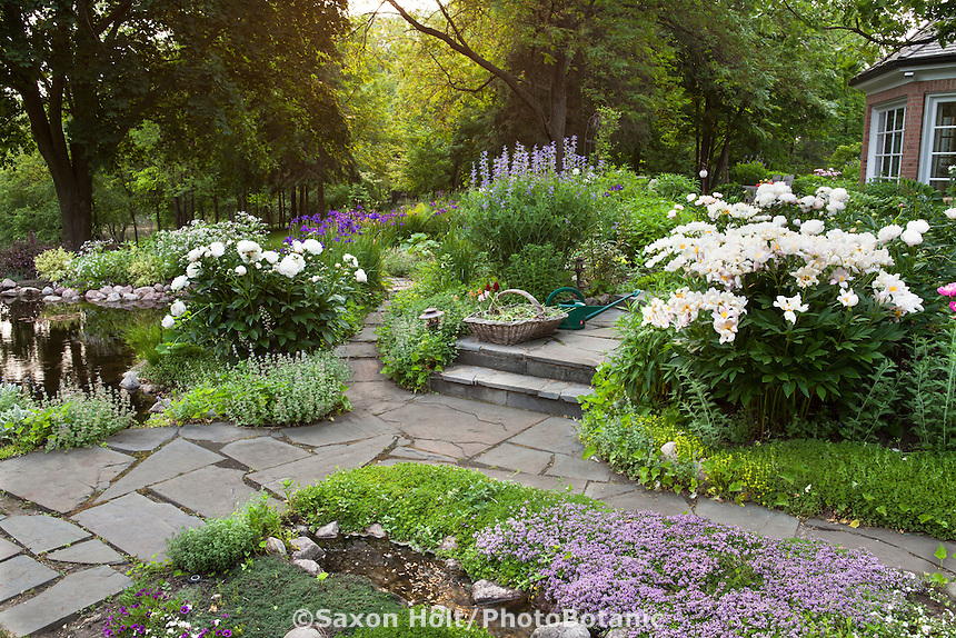 Flagstone pathways converging between perennial borders in backyard Illinois garden with pond
