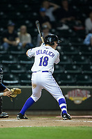 Jeff Gelalich (18) of the Winston-Salem Dash at bat against the Myrtle Beach Pelicans at BB&T Ballpark on May 11, 2017 in Winston-Salem, North Carolina.  The Pelicans defeated the Dash 9-7.  (Brian Westerholt/Four Seam Images)