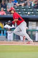 Springfield Cardinals infielder Irving Lopez (11) lays down a bunt on May 16, 2019, at Arvest Ballpark in Springdale, Arkansas. (Jason Ivester/Four Seam Images)