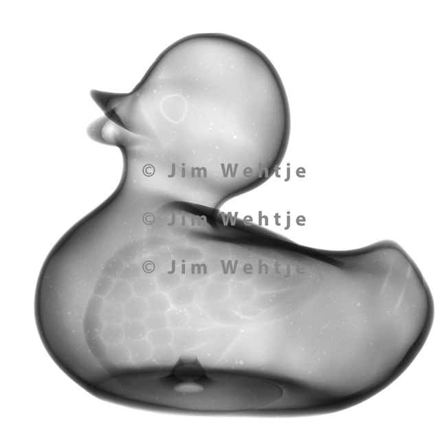 X-ray image of a rubber duck (black on white) by Jim Wehtje, specialist in x-ray art and design images.
