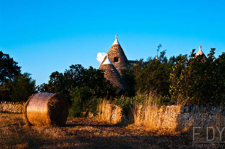 The cones of a trullo (traditionnal housing) towering fields in Valle d'Itria (Apulia, Italia).