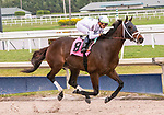 February 1st, 2020: #8 Fearless with jockey Irad Ortiz Jr on board wins Race 4 at Gulfstream Park Race Track in Hallandale Beach, Florida. Liz Lamont/Eclipse Sportswire/CSM