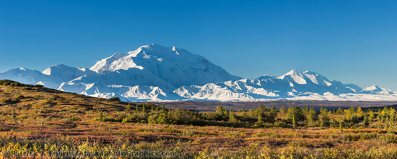Mt. Denali and Mt. Foraker and autumn tundra, Denali National Park, Alaska