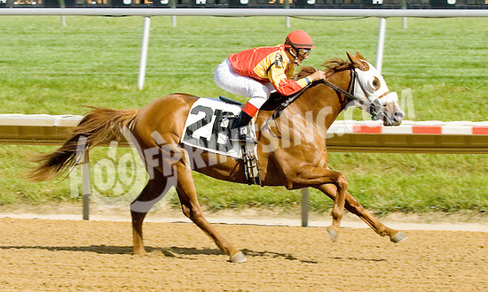 Sand Blastt winning at Delaware Park on 6/7/12