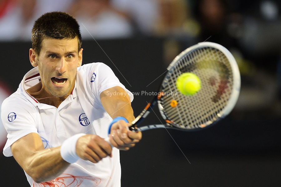 MELBOURNE, 25 JANUARY - Novak Djokovic (SRB) in action against David Ferrer (ESP) during a men's quarterfinals match on day ten of the 2012 Australian Open at Melbourne Park, Australia. (Photo Sydney Low / syd-low.com)