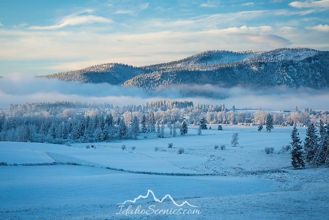 Washington, Eastern, Chewelah. Morning mists hang over a wintery landscape in the Chewelah Valley.