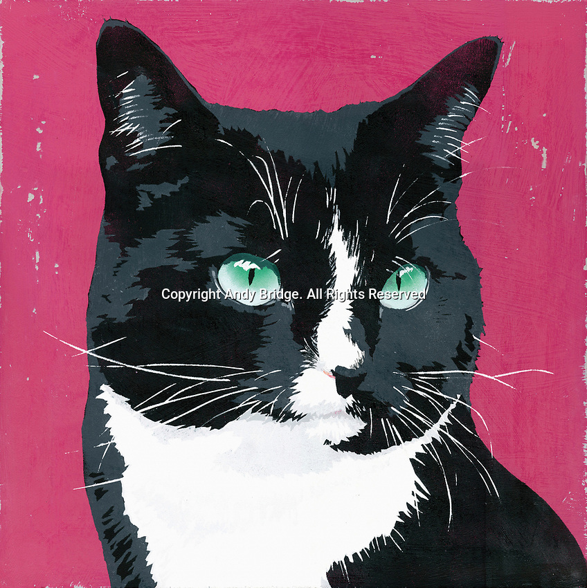 Painting of black and white cat