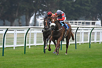 Winner of The Swallowcliffe Handicap (Div 1) Burguillos (noseband) ridden by Eoin Walsh and trained by Luke McJannet  during Horse Racing at Salisbury Racecourse on 13th August 2020