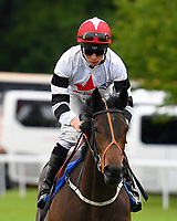 Lafontaine ridden by Jason Watson goes down to the star of The First Carlton Novice Auction Stakes Div 1 during Evening Racing at Salisbury Racecourse on 11th June 2019