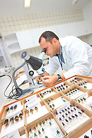 In the Embrapa laboratory in Belém, the collection of pollinating insects that Giorgio Venturieri started 25 years ago, when he did research into the pollination of the Amazonian canopy, is today a reference even if it only brings together 1000 species.