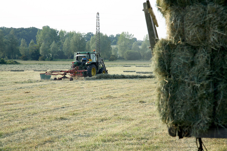 Summer haymaking on rural English farm
