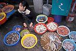 Fishmonger, Tai-O, Hong Kong