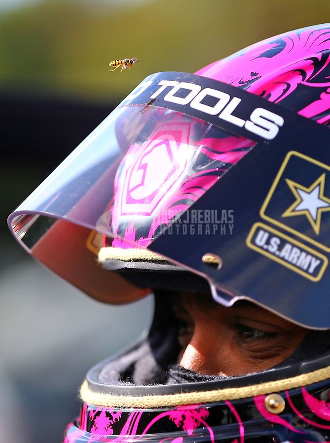 Oct 4, 2015; Mohnton, PA, USA; A yellow jacket wasp flies above the helmet visor of NHRA top fuel driver Antron Brown during the Keystone Nationals at Maple Grove Raceway. Mandatory Credit: Mark J. Rebilas-USA TODAY Sports