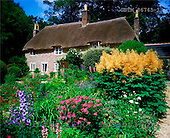 Tom Mackie, FLOWERS, photos, Thomas Hardy's Cottage & Garden, Higher Bockhampton, Dorset, England, GBTM86745-1,#F# Garten, jardín
