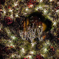 A lighted wreath hung in a window frames lighted trees on the sidewalk below.