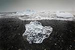 Powerful ocean currents sweep Iceland's southern coast, tossing these enormous icebergs like dice. The ice, which formed in Europe's largest ice cap over a thousand years ago, calves into striking bergs at the shore of Jokulsarlon Ice Lagoon. After floating through an outlet to the sea, the icebergs slowly melt in the pounding surf, returning their moisture to the water cycle. In this photograph, the low, flat light of the overcast sky reveals gradations of blues contrasted with the ocean's grayer tones.