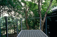 A balcony juts from the rear of the house amongst the branches of the surrounding trees