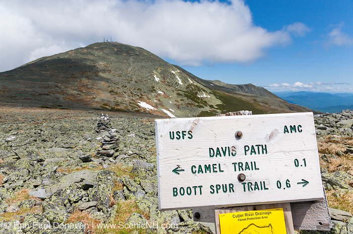 Davis Path sign with Mt Washington on the background from Davis Path in the White Mountains of New Hampshire.